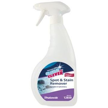 Clean and Clever Spot and Stain Remover 750ml Trigger Bottle