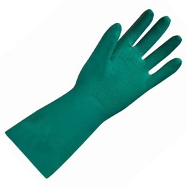 Picture of HOUSE GLOVE - GREEN MEDIUM LATEX