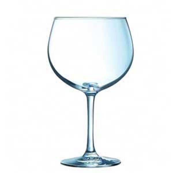 JUNIPER GIN & COCKTAIL GLASS